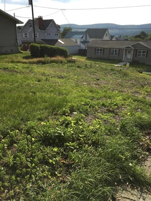 Lots and Land - Carbondale, PA (photo 3)