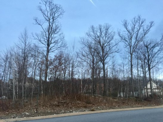 Lots and Land - Moosic, PA (photo 3)