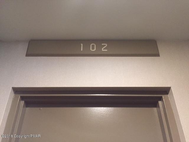 Condominium, Contemporary - Lake Harmony, PA (photo 4)