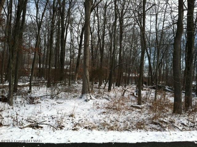 Raw Land - East Stroudsburg, PA (photo 1)