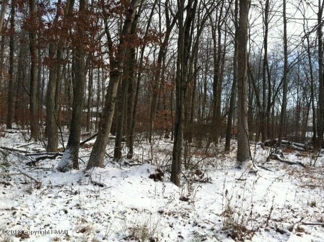 Raw Land - East Stroudsburg, PA (photo 3)