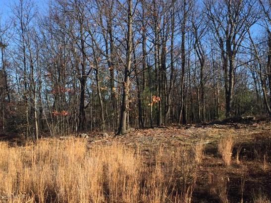Lots and Land - Scranton, PA (photo 2)