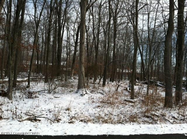 Raw Land - East Stroudsburg, PA (photo 2)