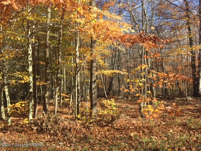 Approved Lot - Tobyhanna, PA (photo 1)