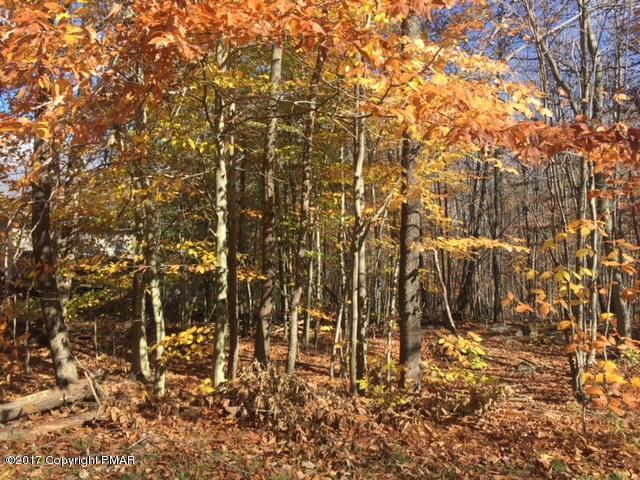 Approved Lot - Tobyhanna, PA (photo 2)