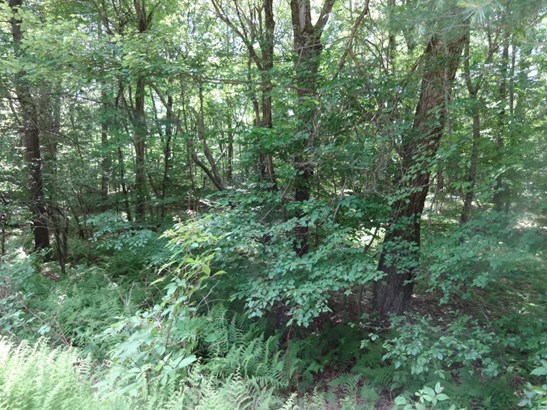 Approved Lot - Thornhurst, PA (photo 1)
