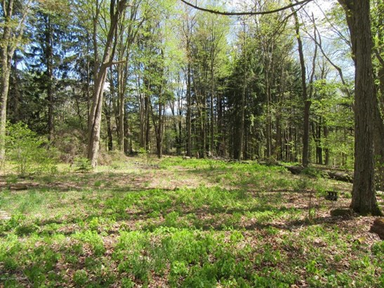 Approved Lot - Clifton Township, PA (photo 1)