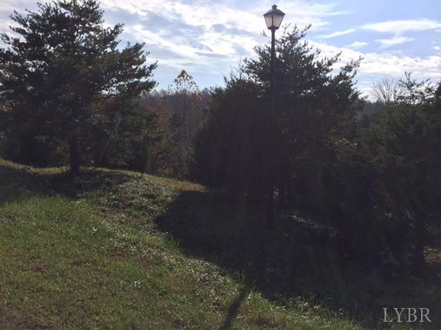 Unimproved Land - Gretna, VA (photo 3)