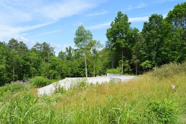 Land - Goode, VA (photo 1)