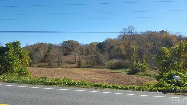 Land - Bedford, VA (photo 1)