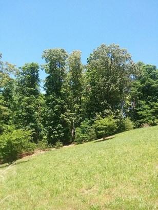 Unimproved Land - Gretna, VA (photo 2)