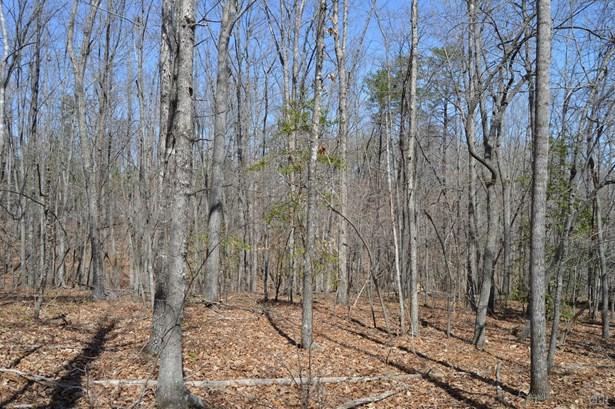 Land - Huddleston, VA (photo 3)