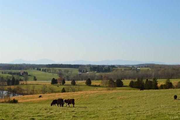 Farm - Evington, VA (photo 4)