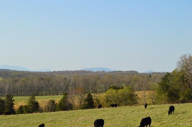 Farm - Evington, VA (photo 5)