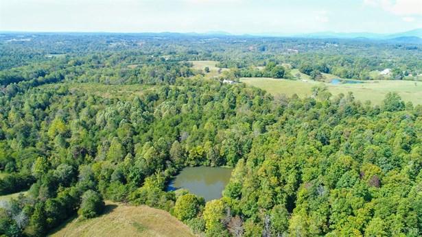 Unimproved Land - Goode, VA (photo 5)