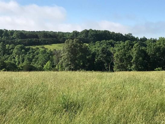 Farm House, Single Family Residence - Bedford, VA (photo 4)