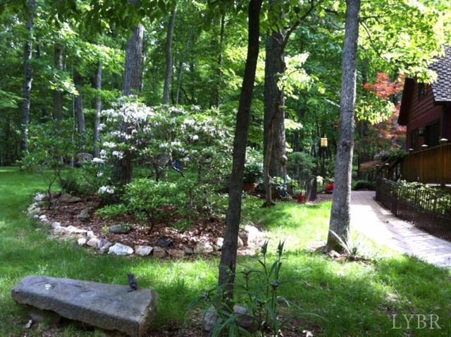 Single Family Residence, Contemporary - Lynchburg, VA (photo 5)