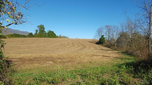 Land - Bedford, VA (photo 3)