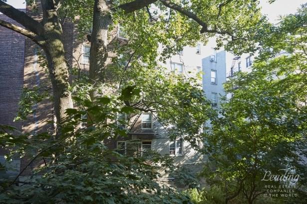 2116 Dorchester Road 3j, Ditmas Park, NY - USA (photo 5)