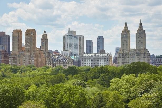 955 Fifth Avenue 12a, New York, NY - USA (photo 5)