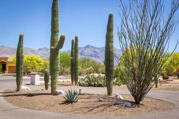 901 W Las Lomitas Road, Tucson, AZ - USA (photo 1)