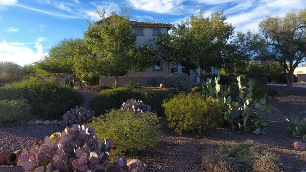 4556 W Mallow Lane, Tucson, AZ - USA (photo 1)