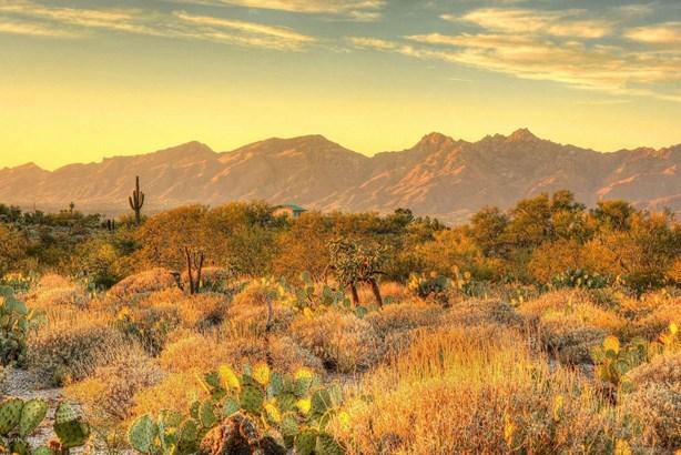 10660 E Old Spanish Trail, Tucson, AZ - USA (photo 1)
