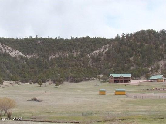 116 Acr, Nutrioso, AZ - USA (photo 1)