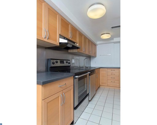Condo,LoRise1-4st,Unit/Flat, Contemporary,Open Loft - PHILADELPHIA, PA (photo 4)
