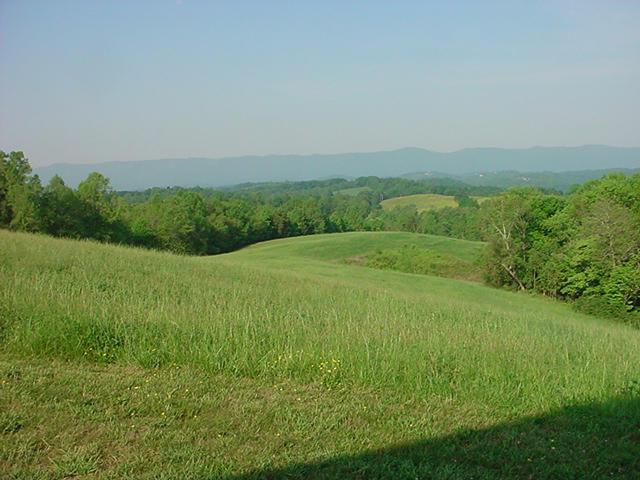 Other - Jacksboro, TN (photo 5)