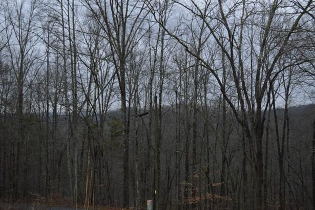 Single Family - Caryville, TN (photo 4)