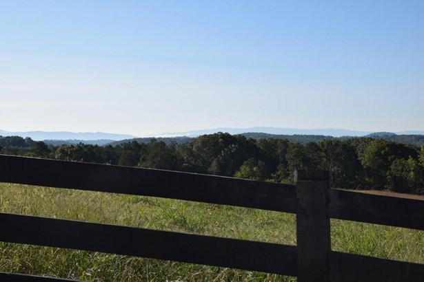 Rural,Single Family - Lenoir City, TN (photo 4)