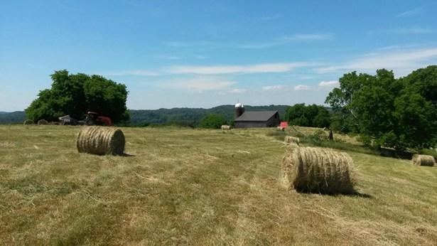 Rural,Single Family - Lenoir City, TN (photo 5)