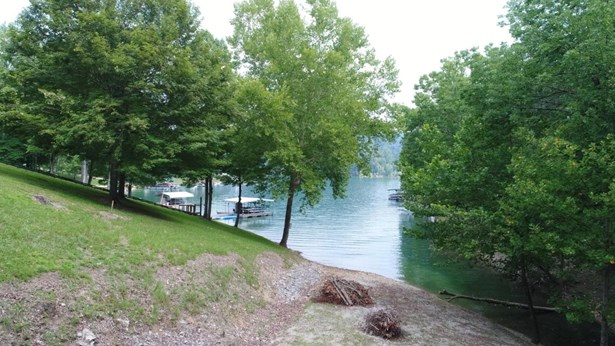Lake Front,Single Family - Caryville, TN (photo 1)