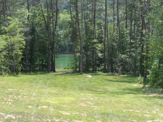 Ranch,Residential, Traditional - New Tazewell, TN (photo 4)