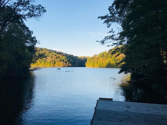 Lake Front,Waterfront Access - Lenoir City, TN (photo 1)