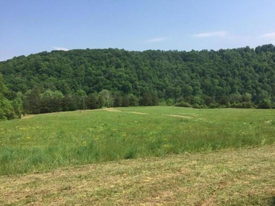 Farm,Recreational,Rural,Single Family - Philadelphia, TN (photo 1)
