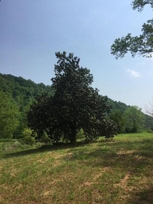 Farm,Recreational,Rural,Single Family - Philadelphia, TN (photo 5)