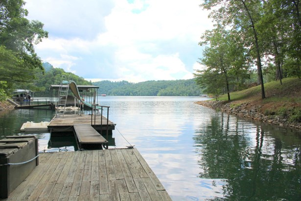 Ranch,Residential, Cabin - Lafollette, TN (photo 5)