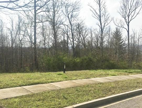 Single Family - Knoxville, TN