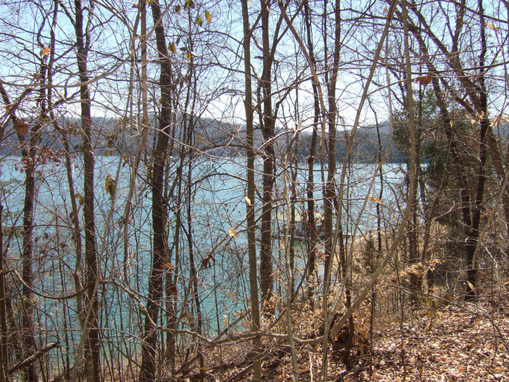 Lake Front,Single Family - Sharps Chapel, TN (photo 3)