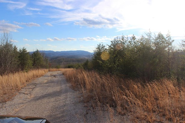 Rural,Single Family - Jellico, TN (photo 5)