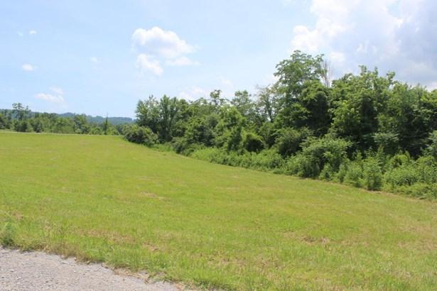 Rural - Speedwell, TN (photo 3)