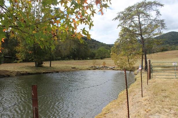 Farm,Mobile Home,Rural,Single Family - Jellico, TN (photo 3)