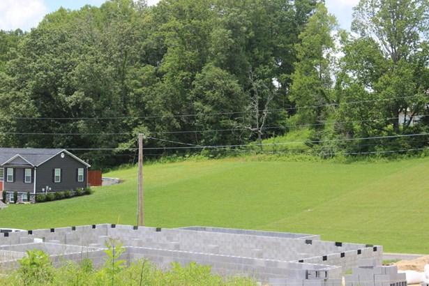 Rural,Single Family - Jacksboro, TN (photo 3)
