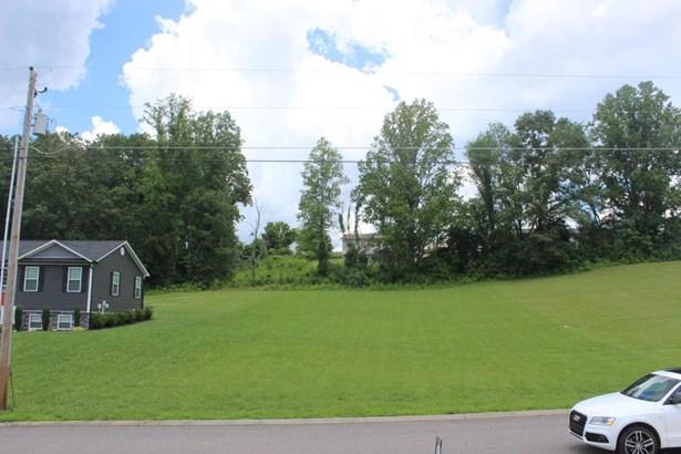 Rural,Single Family - Jacksboro, TN (photo 4)