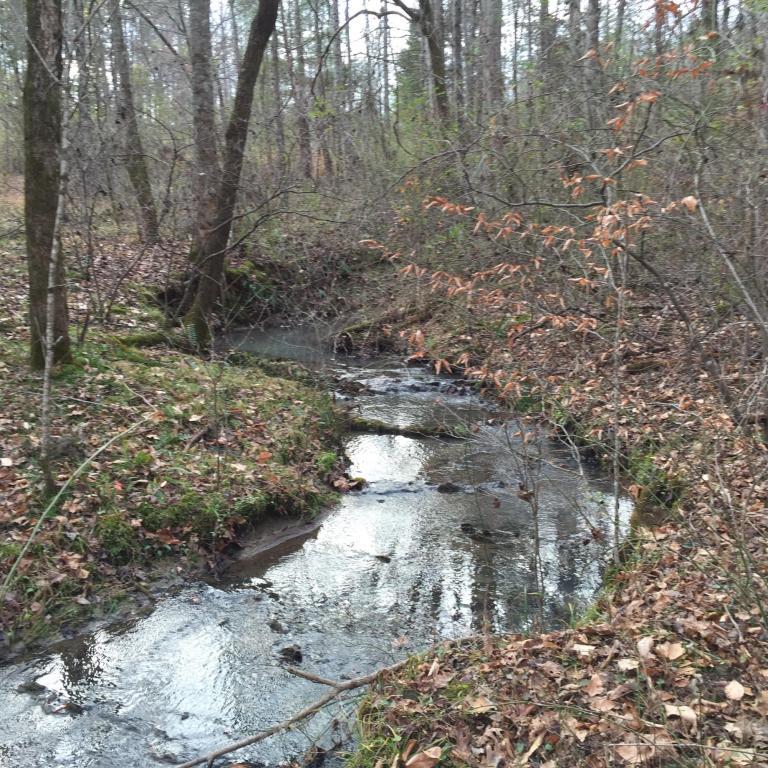 Recreational,Rural,Single Family - Lenoir City, TN (photo 1)