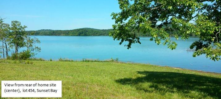 Lake Front,Single Family - Sharps Chapel, TN (photo 4)