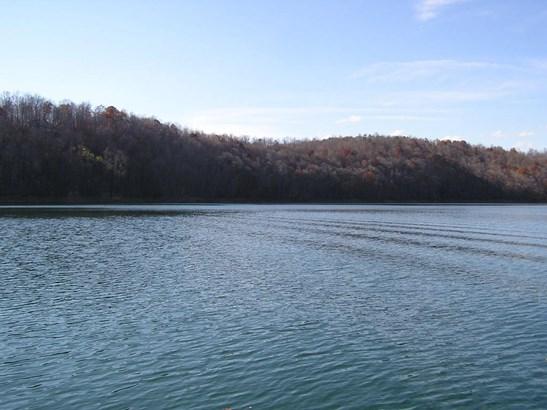 Lake Front,Single Family,Waterfront Access - Jacksboro, TN (photo 1)
