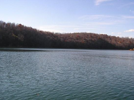 Lake Front,Single Family,Waterfront Access - Jacksboro, TN (photo 5)